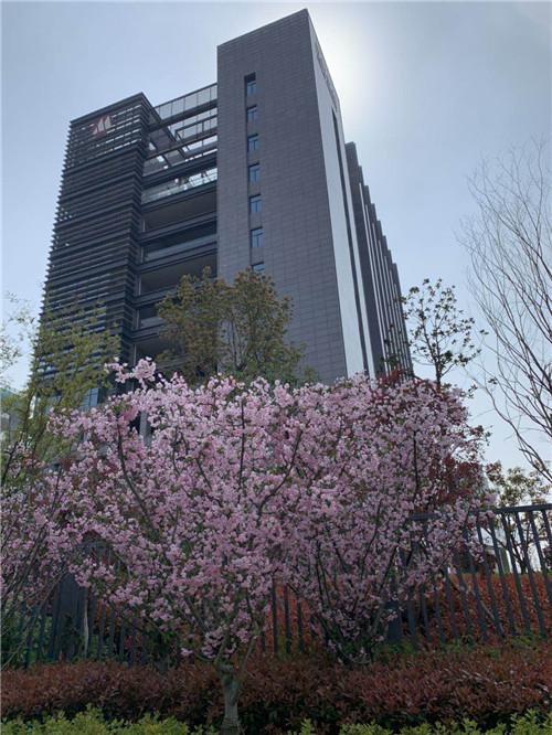 办公楼照片 (4)