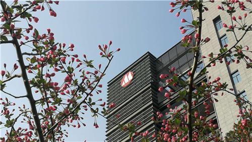 办公楼照片 (6)